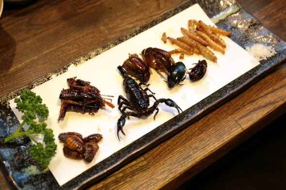 6種の昆虫食べ比べセット