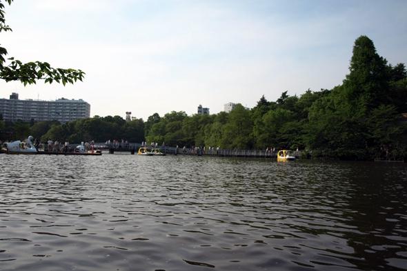 在りし日の池